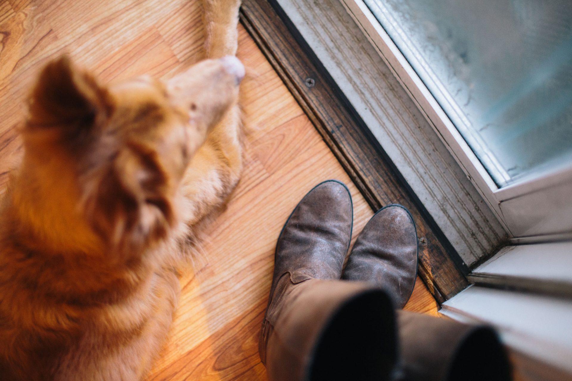7 Tipps die einen Wohnungseinbruch verhindern 3