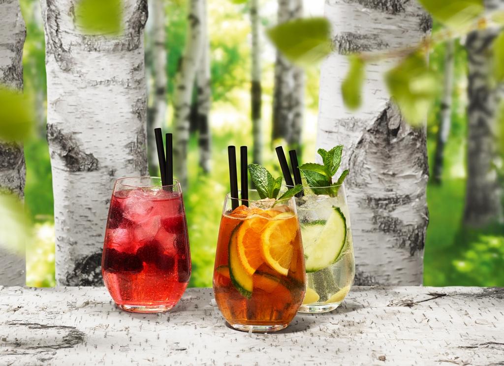 Rezept für den Grünschnabel-Cocktail 21