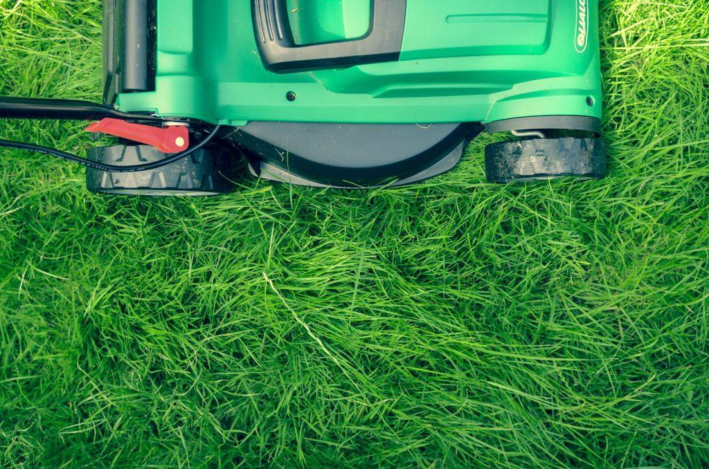 Wie wird der Rasen richtig vertikutiert?